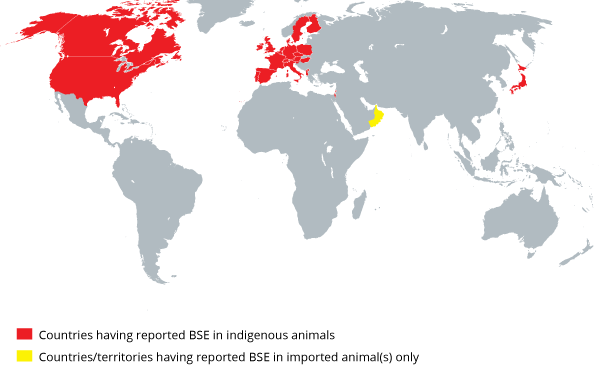 Countries having reported BSE